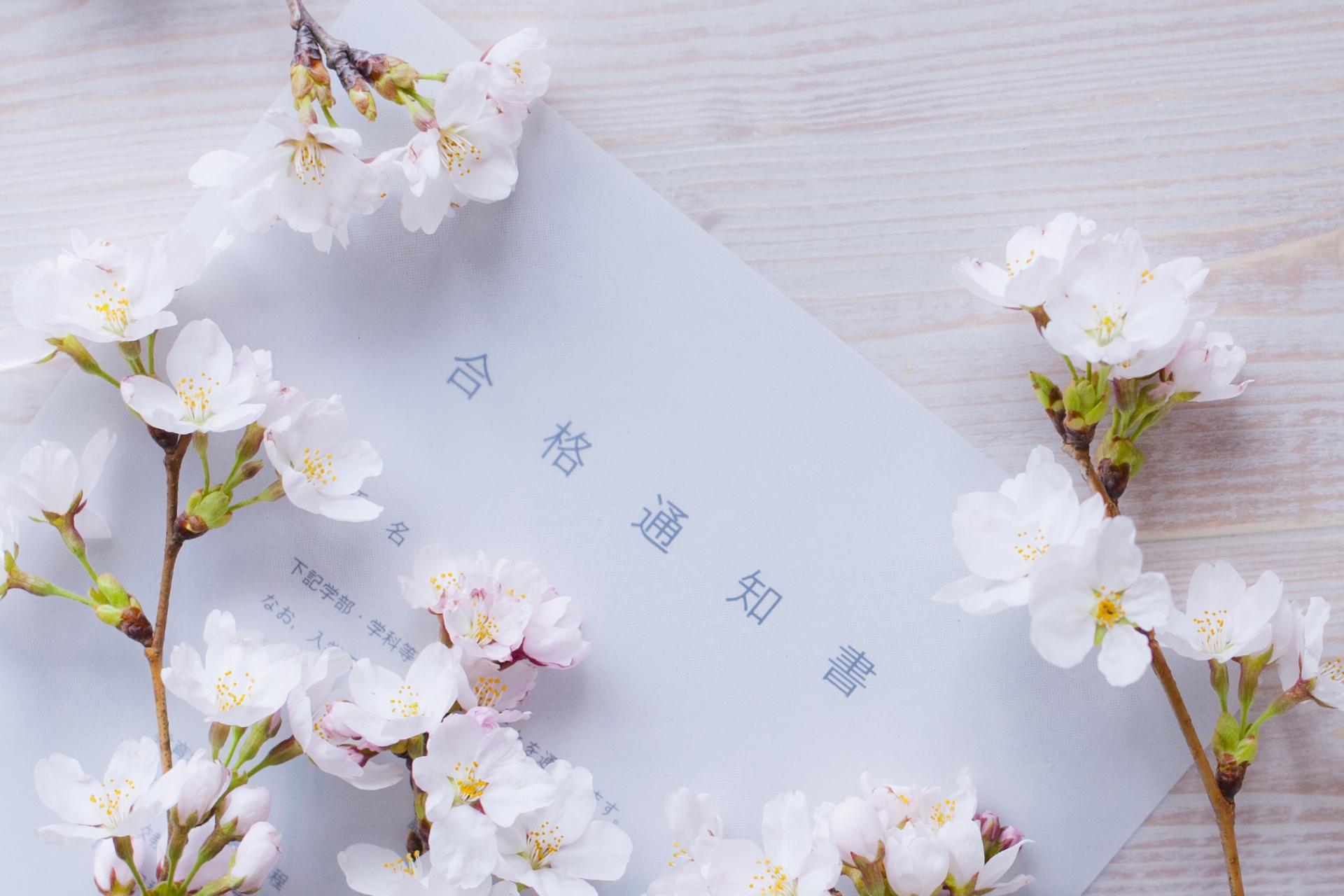 桜の花と合格通知