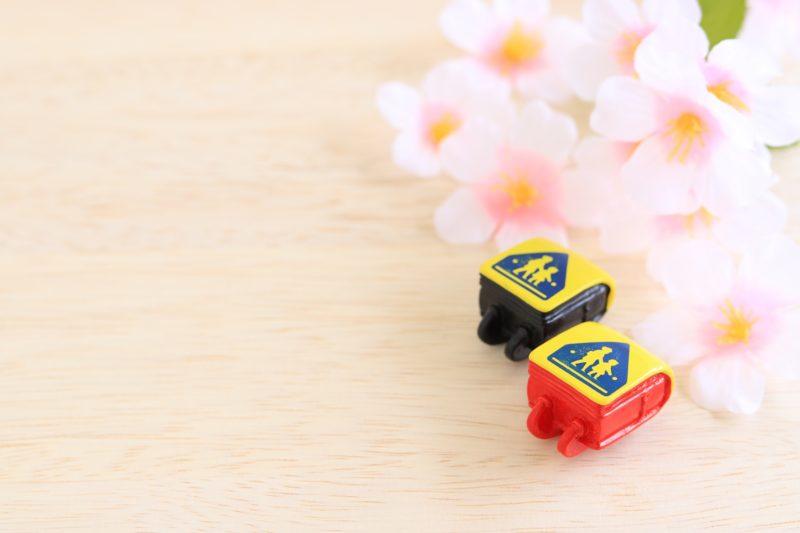 桜と2つのランドセル